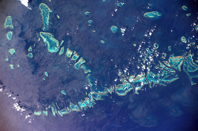 Australie corail barriere