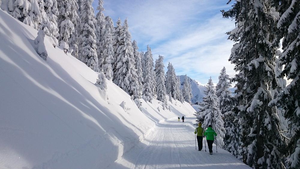 Kitzbühel dans les Alpes Autrichienne
